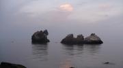 Птичьи скалы в п. Утес